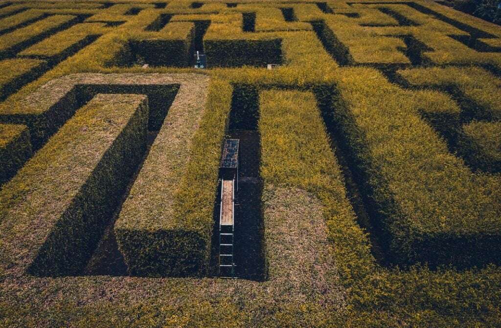 A maze to represent using social networking to find a job