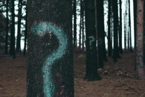 question marks on trees to represent interview questions in the admissions process