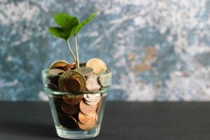 a plant growing in a pot of money to represent what changes when you become partner