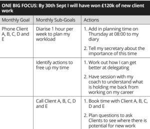 partner track plan example